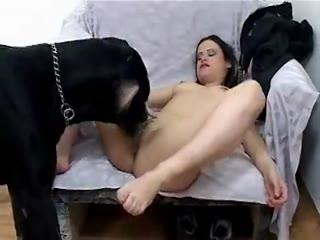 Young brunette love dog sex hardcore - Dog Sex HD