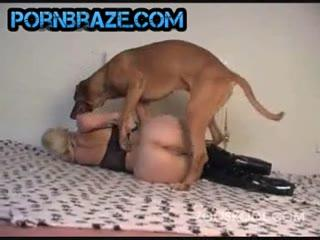 [zoosKool] Natural Ass And Sexy Pussy Rape By dog